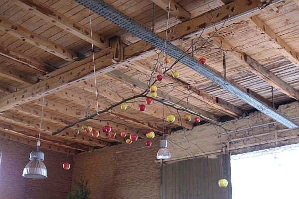 Weihnachtsmarkt Späthsche Baumschulen